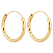 Gold Hoop Earrings (1)