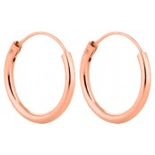 Rose Gold Hoop Earrings  (1)