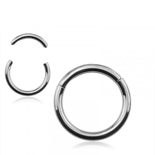 Stainless Steel 316L Segment Ring