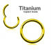Titanium Hinged Segment Ring Gold ‐ Quality tested by Sheffield Assay Office England